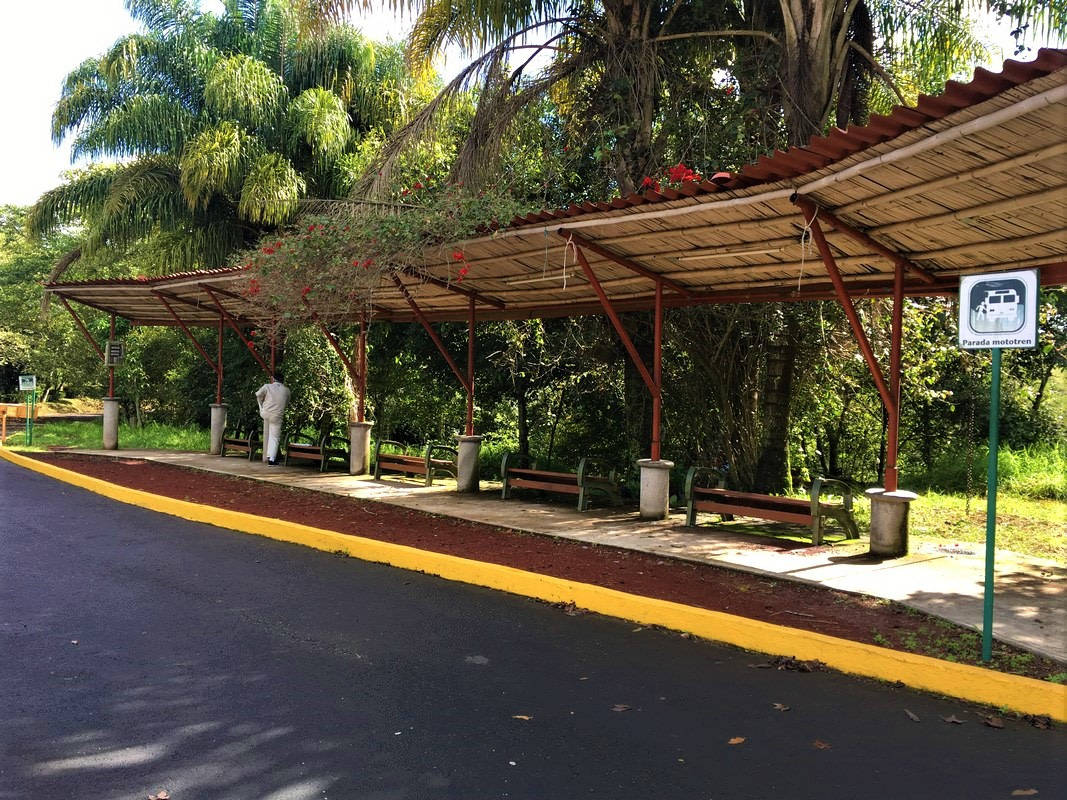 Parque Natura Xalapa   Visita Xalapa