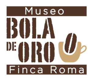 Logo Museo Bola De Oro