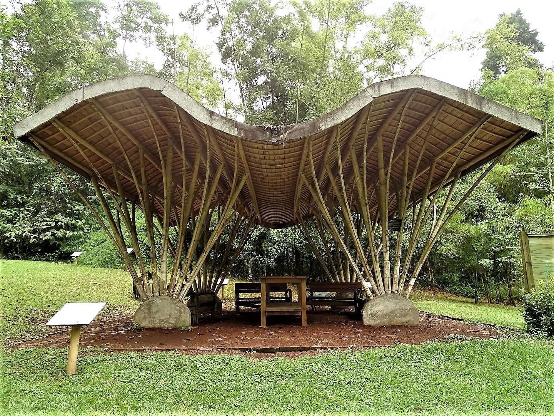 Jardín Botánico | Visita Xalapa