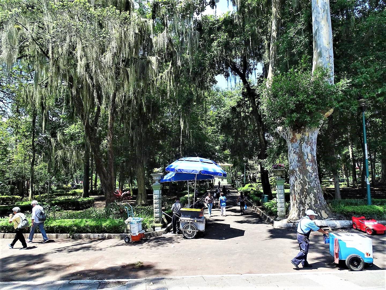 Parque Los Berros | Visita Xalapa
